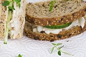 Cucumber And Coleslaw Sandwich