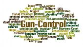 Gun Control Word Cloud on White Background