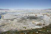 Постер, плакат: Соль болото в пустыне Атакама Боливия