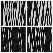 Zebra Prints Animal Furs Seamless Patterns