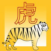 Tiger And Japanese And Chinese Horoscope Hieroglyph