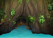 pic of epiphyte  - Illustration of a cave and water in a beautiful nature - JPG