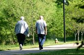 Seniors Walking On Park Pathway
