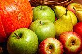 Apple, Pear, Pumpkin