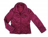 stock photo of jupe  - claret jacket - JPG