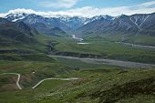 Visiting Denali National Park