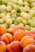 Fresh Organic Peach And Nectarines