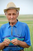 stock photo of gleaning  - the old farmer examines the quality of the wheat - JPG