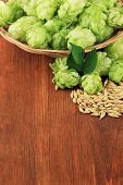 Fresh green hops in wicker basket and barley, on wooden background
