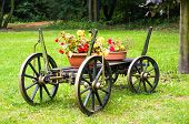 stock photo of quaint  - The old wooden cart in the garden - JPG