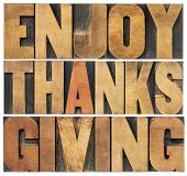Enjoy  Thanksgiving  - isolated text in vintage letterpress wood type blocks scaled to a rectangle s