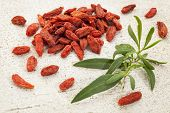 dried Tibetan goji berries (wolfberry) with a fresh goji leaf on white rough wood surface