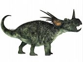 Styracosaurus Profile