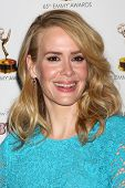 LOS ANGELES - SEP 20:  Sarah Paulson at the Emmys Performers Nominee Reception at  Pacific Design Ce