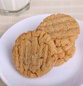 Cookie Treat