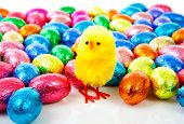pic of easter candy  - chicken and colorful easter eggs in closeup over white background - JPG