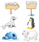 Illustration of the signboards, animals and an igloo at the north pole on a white background