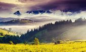 Beautiful view of alpine meadows. Creative collage. Beauty world.