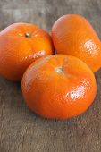 picture of satsuma  - Nadorcotts sweet and juicy type of satsuma - JPG