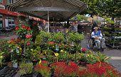 Flower Market, Nice, France