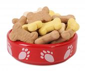 Dog food bowl with dog biscuits shaped like bones