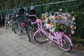 Lisse, Netherlands - April 20, 2013: Bicycle on flower parade. The annual Flower Parade in Holland b