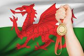 Medal In Hand With Flag On Background - Wales