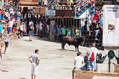 Festival of bulls and horses in Segorb
