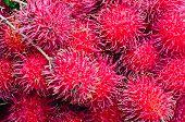 Rambutan Fruit Display For Sell On Small Street In Malwana