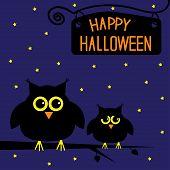 Happy Halloween  Cute Owls Card. Starry Night.