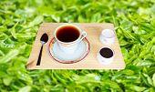 Fresh World-Renowned Ceylon Black Tea