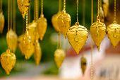 Golden Pho tree leave