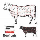 Beef cuts diagram for butchery.