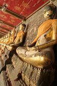 Buddha Infinity
