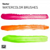 Vector isolated paint brushes