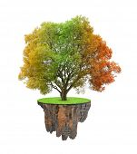 Little island and colorful autumnal tree isolated on white background