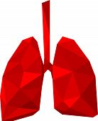 polygon lung
