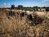 Vine Pots At San Silvestre Castle, Noves, Castilla La Mancha, Spain