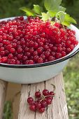 Red Currant Berries In A Large Bowl On The Bench, And A Bunch Of Currant Close.
