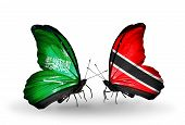 Two Butterflies With Flags On Wings As Symbol Of Relations Saudi Arabia And Trinidad And Tobago