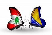 Two Butterflies With Flags On Wings As Symbol Of Relations Lebanon And Bosnia And Herzegovina