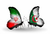 Two Butterflies With Flags On Wings As Symbol Of Relations Iran And Algeria