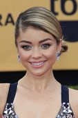 LOS ANGELES - JAN 25:  Sarah Hyland at the 2015 Screen Actor Guild Awards at the Shrine Auditorium on January 25, 2015 in Los Angeles, CA