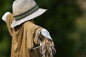 picture of ou  - Scarecrow In vegetable Patch Ou In The Country - JPG