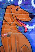 Street art Montreal funny dog