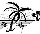 Black and white tropical landscape with palm trees