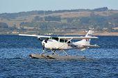 Floatplane On Lake Rotorua New Zealand