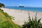 Hahei Beach - New Zealand