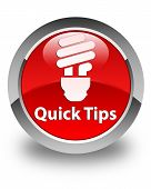 Quick Tips (Bulb Icon) Glossy Red Round Button