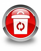 Trash Icon Glossy Red Round Button
